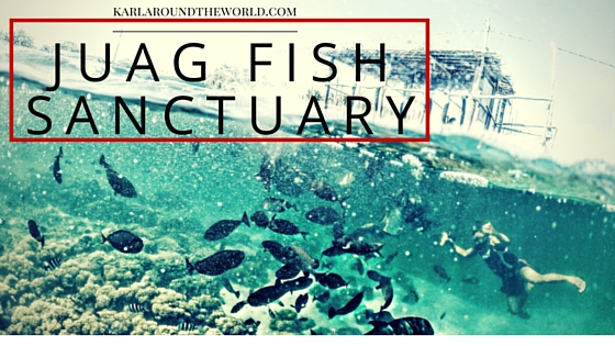 juag-fish-sanctuary-matnog-sorsogon