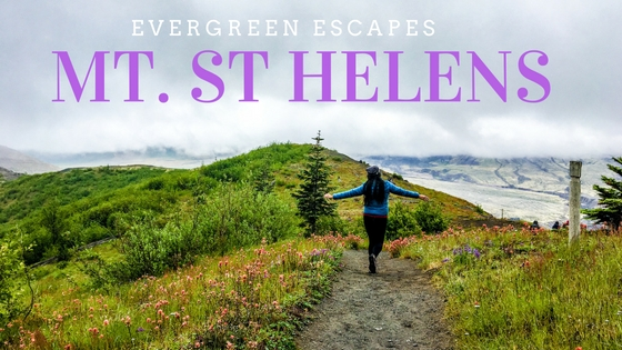 Mt St Helens by Evergreen Escapes