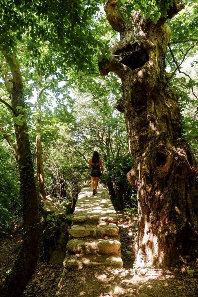 Hiking-Meteora-with-Visit-Meteora