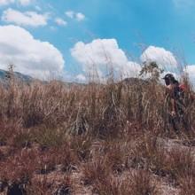 Tarak Ridge, Mariveles, Bataan. 11