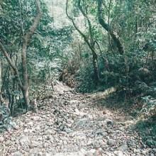 Tarak Ridge, Mariveles, Bataan. 19