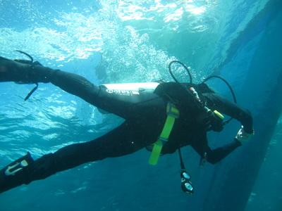 Northern Cebu: Diving in Malapascua 21