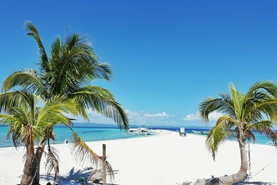 Northern Cebu: Diving in Malapascua 9