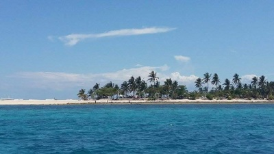 Northern Cebu: Diving in Malapascua 4