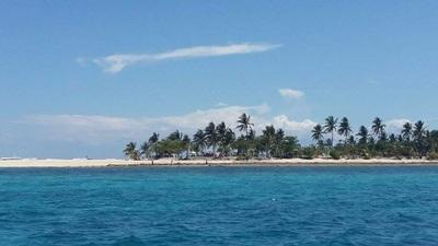 Northern Cebu: Diving in Malapascua 4