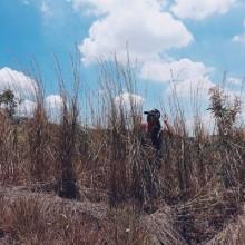 Tarak Ridge, Mariveles, Bataan. 9