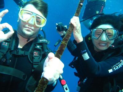 Northern Cebu: Diving in Malapascua 17