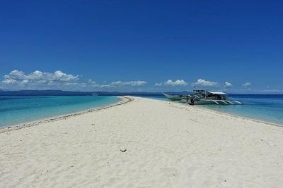 Northern Cebu: Diving in Malapascua 14