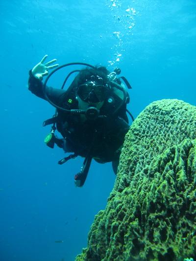 Northern Cebu: Diving in Malapascua 32