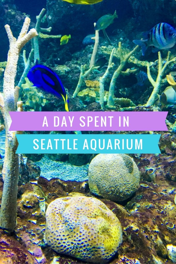 karlaroundtheworld Seattle Aquarium
