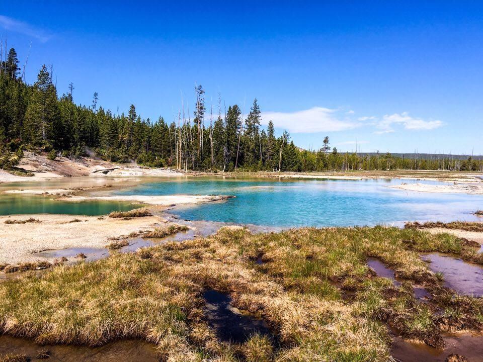 Karlaroundtheworld-yellow-stone-national-park
