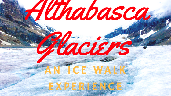 Icewalk columbia icefields