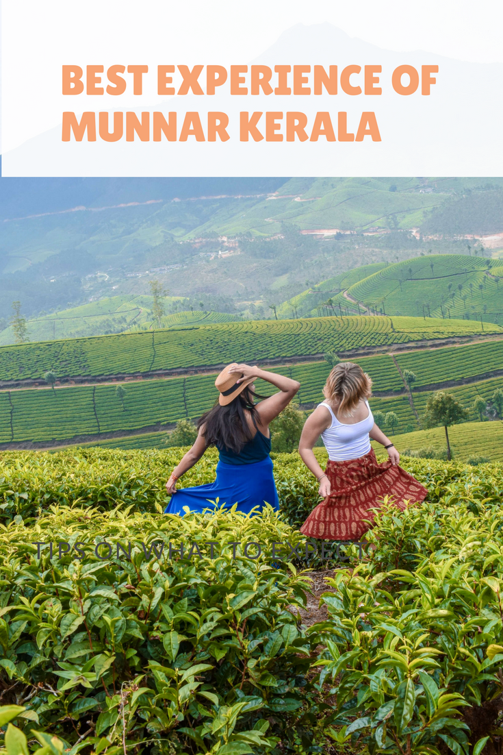 What-to-do-in-Munnar