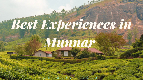 Places-to-visit-in-Munnar