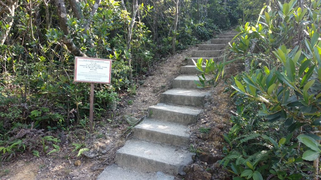 You will reach an open area and then  a step of stairs marked with a white sign.