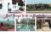 Things-to-do-in-Dambulla