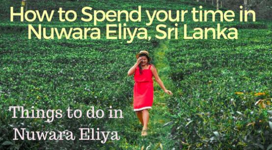 Things-to-do-in-Nuwara-Eliya