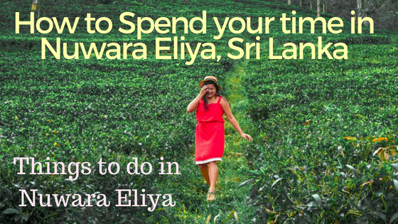 Things-to-do-in-Nuwara-Eliya