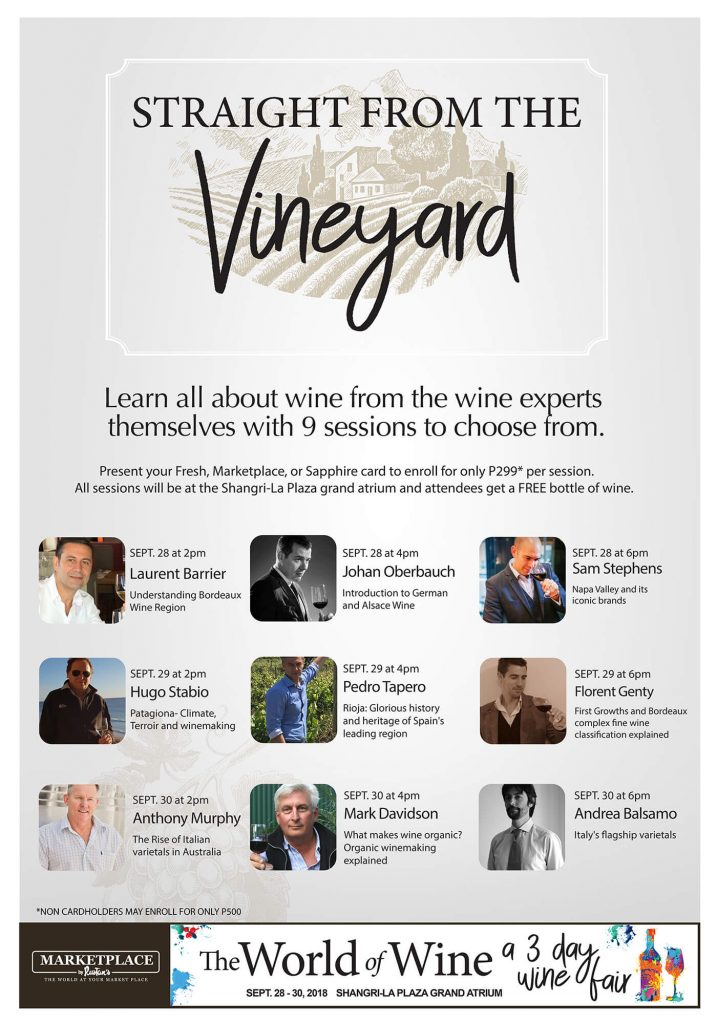 World of Wine Vineyard Poster