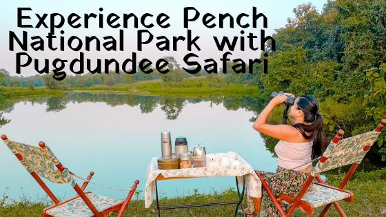 Pugdundee Safari