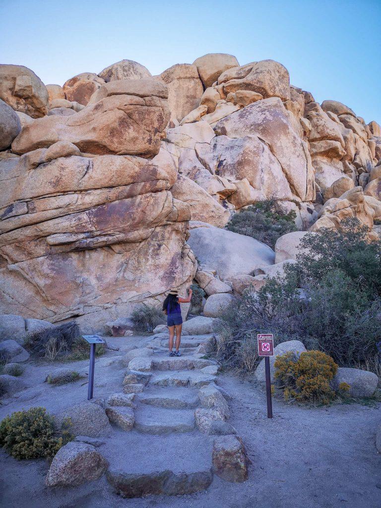 Best hikes in Joshua Tree Park