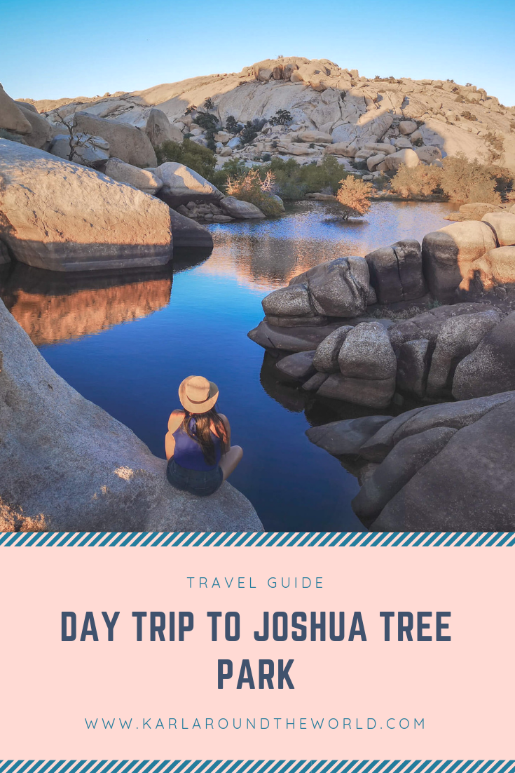 Joshua Tree Park Day Trip