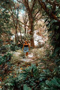 Mount Purro Nature Reserve