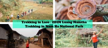 Luang Namtha Adventure Trekking