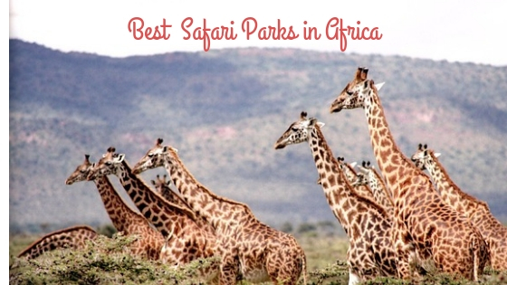 Best Safari Parks in Africa