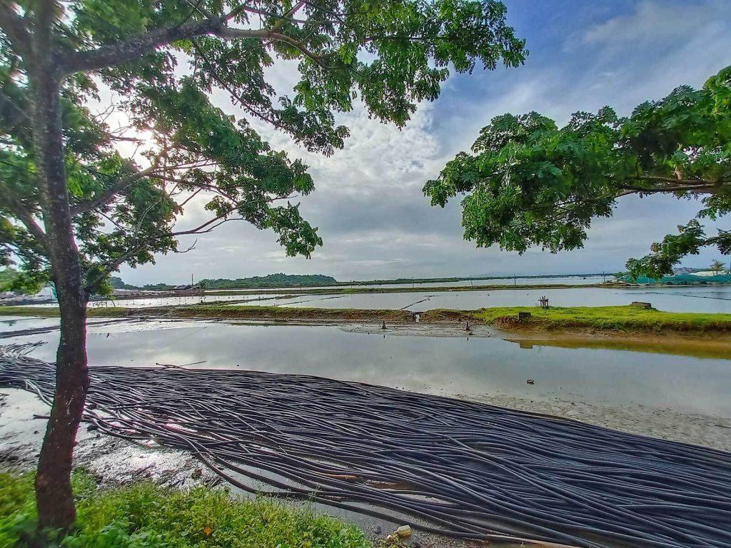 Salt Farm Tours - Pacific Farms Agri-Eco Tour - Salt Ponds