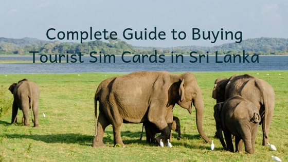 Sri Lanka Tourist Sim Card
