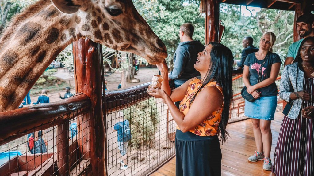 Things to do in Nairobi
