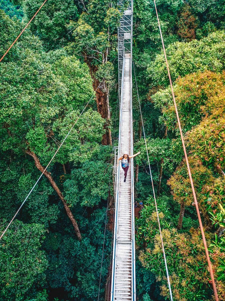 Sumbiling Eco Village Canopy Walk