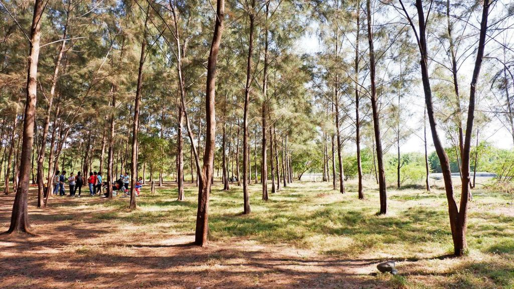 Things to do in La Union - Lakbay Norte 9 - Agoo Eco Fun Park