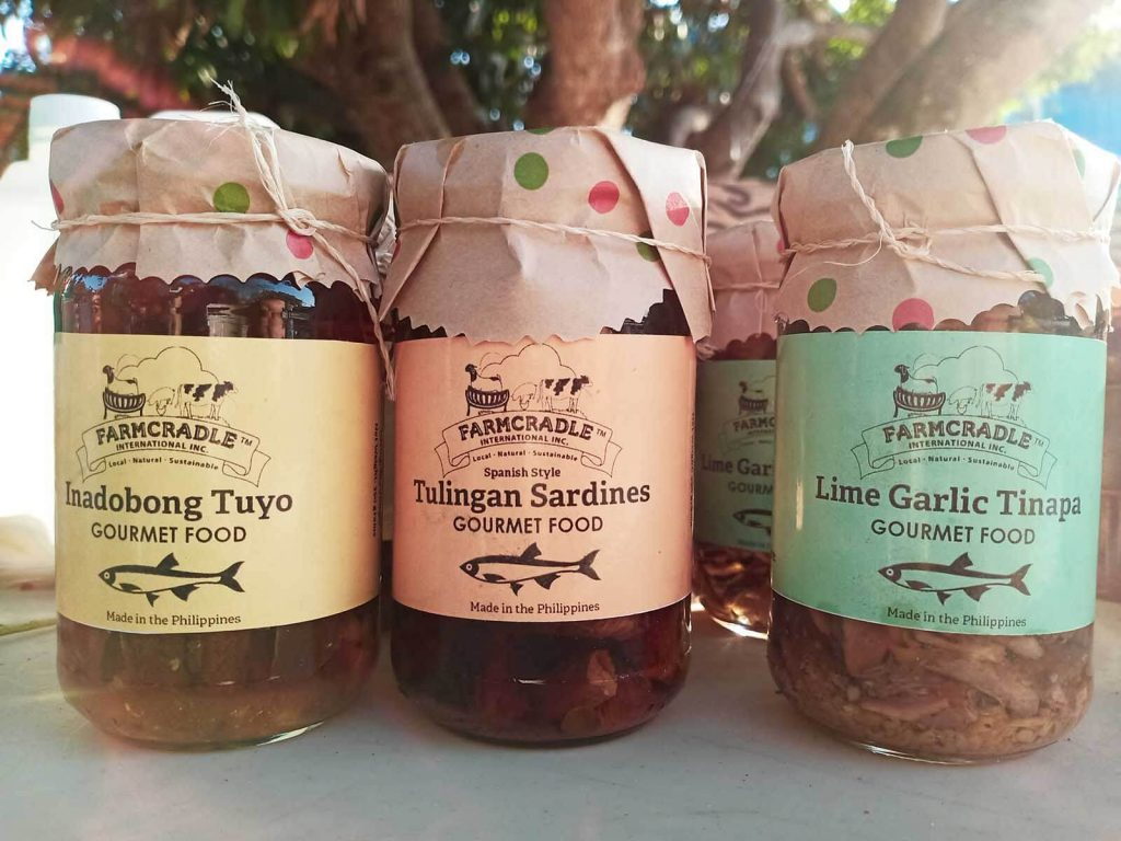 what to do in pangasinan - farmcradle