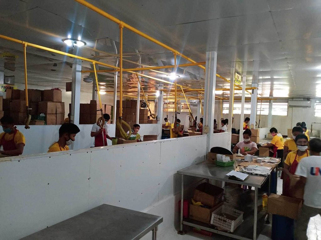 what to do in pangasinan - bagoong factory
