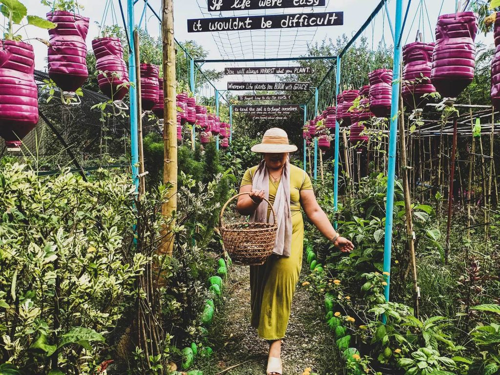 What to do in pangasinan - our farm republic