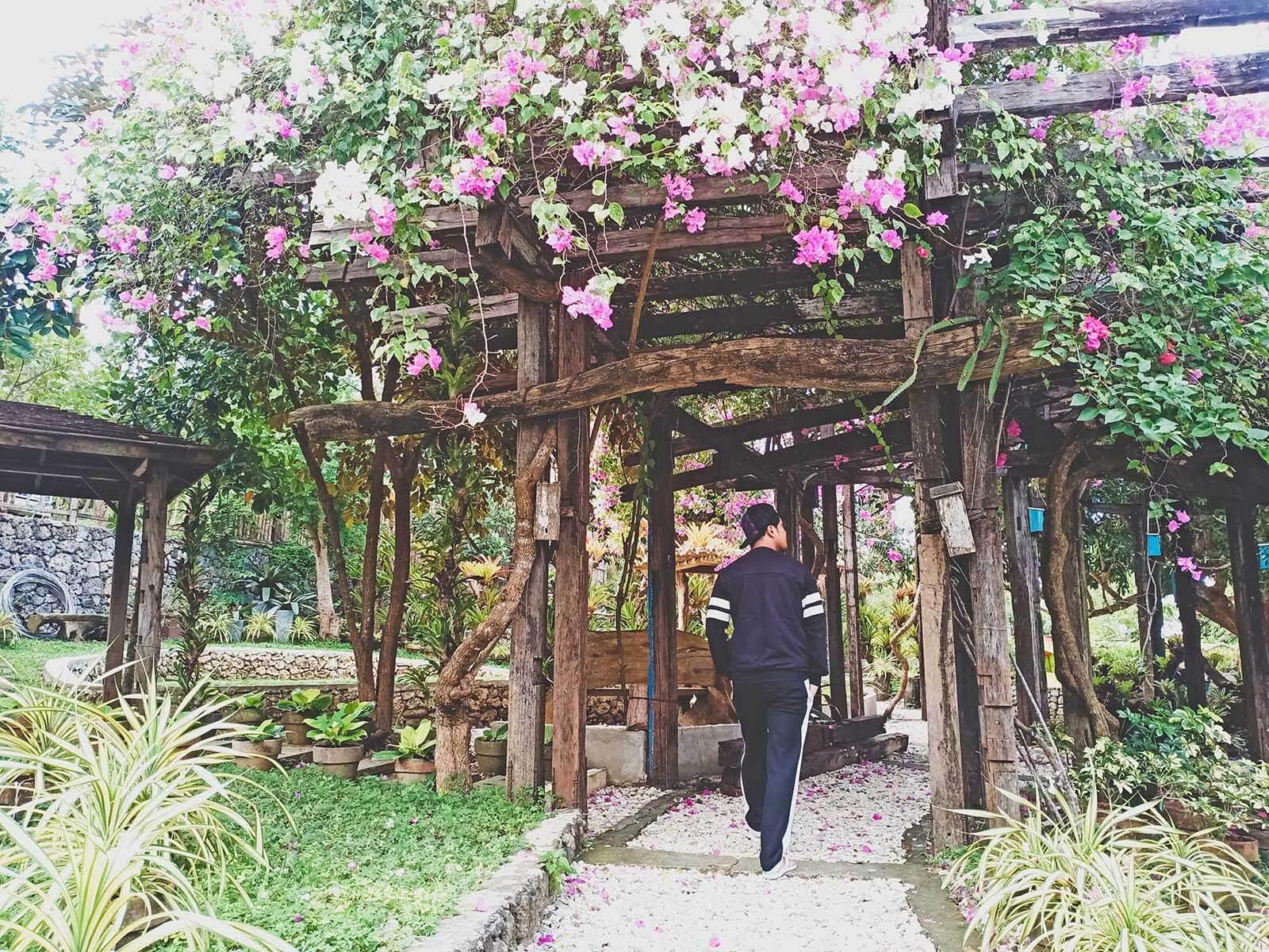 OldWoods by the Sea Nature Resort -Trellis Garden